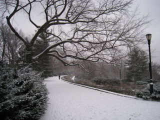 Fort tryon park 3