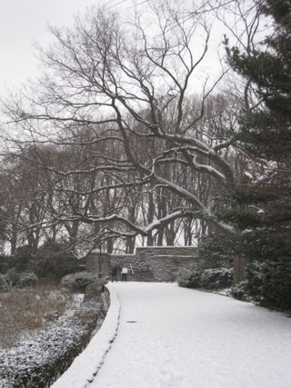 Fort tryon park 2