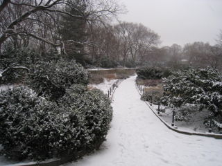 Fort tryon park 4
