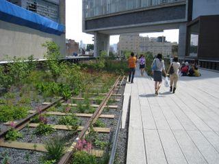Highline 11