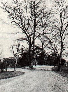 Bloomingdale Asylum